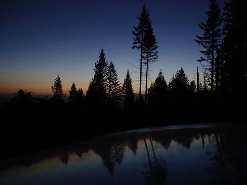 sunrise trees roundtop