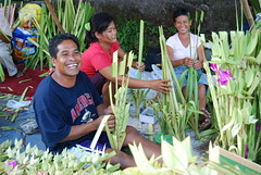 Happy Palm Frond Vendors