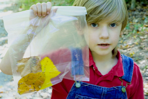 iain and leaf collection.jpg