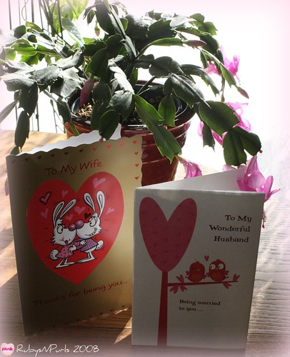 Cactus and Valentine's Cards