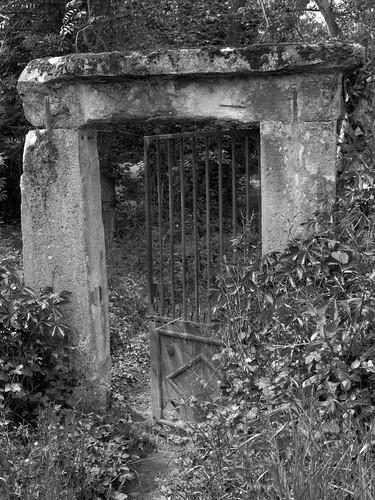 Door - open on my dream