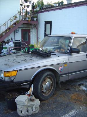 Car as potting shed