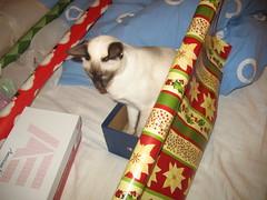 xmas wrapping 026