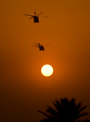 Blackhawks flying towards the setting sun