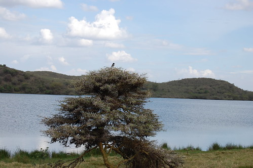 Saline lake in Arusha National Park