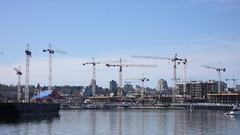 Cranes.  So Many Cranes.