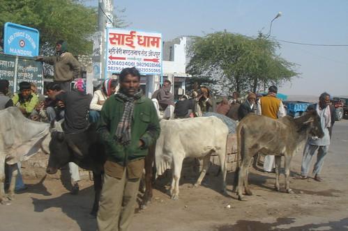 前往Jaisalmer路上1-14公車站