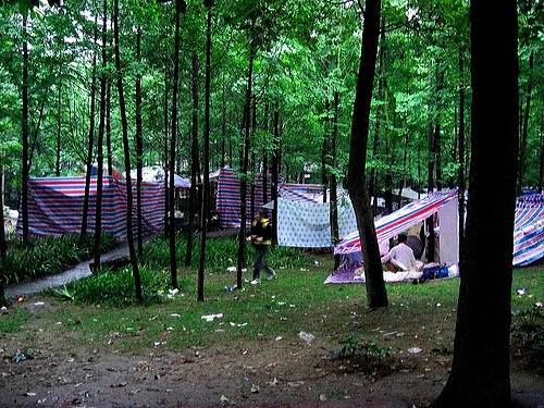Tents and trees