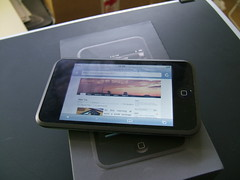 iPod Touch Web Browsing