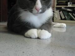 zen-like pose