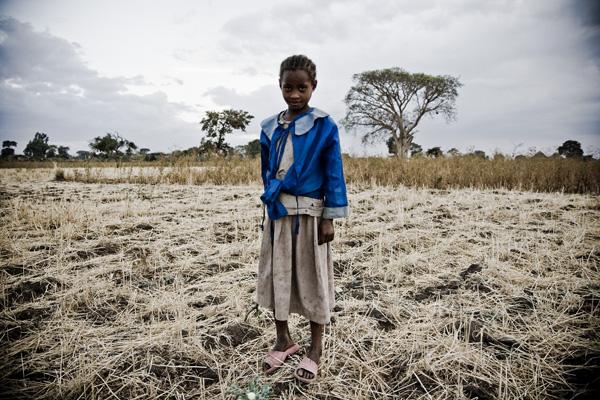 farmlands of ethiopia
