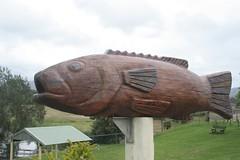 big bass, bulahdelah
