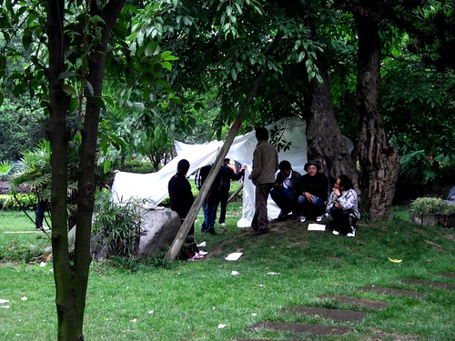 Students camping in the green