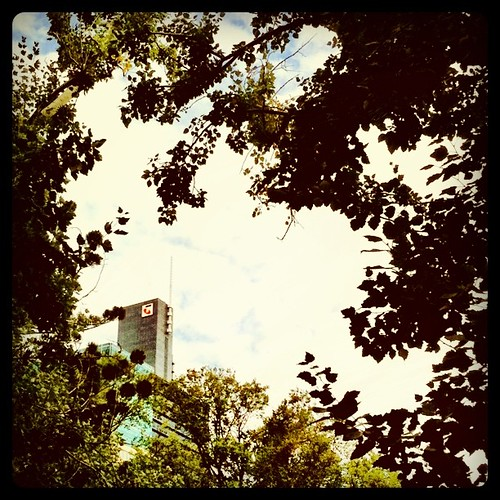 Telstra in the trees #instameet #instamelb #Melbourne