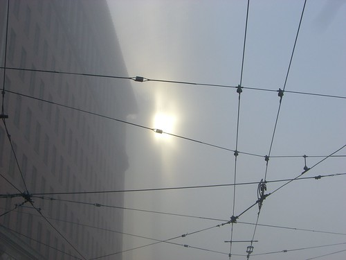 Sun, Fog, and Overhead Wires