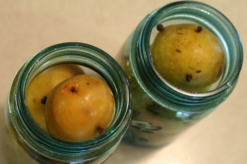 Pears stuffed in jars ready for brine