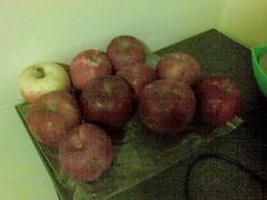 15102007 apples