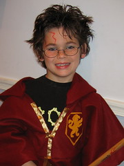 Harry's Quidditch Robes