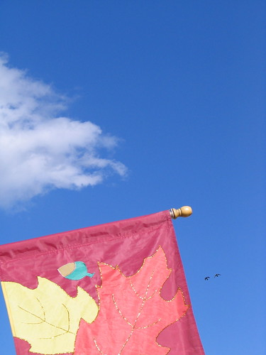 Fall Flag with Birds