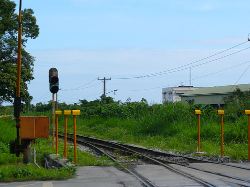 P1030273