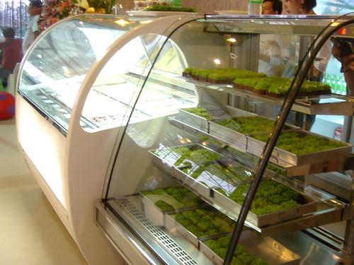Ice cream display and Bakery Display