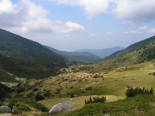 Долината на Козя река