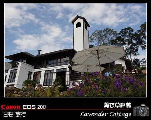 LavenderCottage_0024