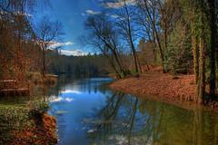 Biltmore Bass Pond