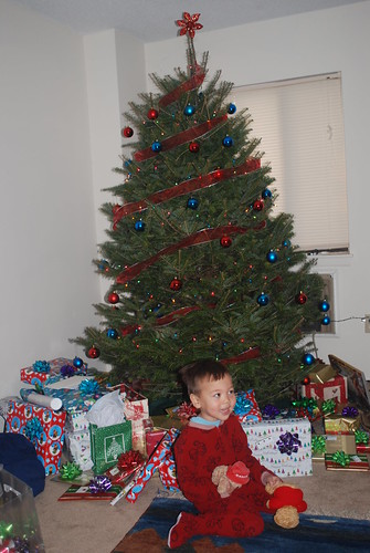 Lots of presents under the tree
