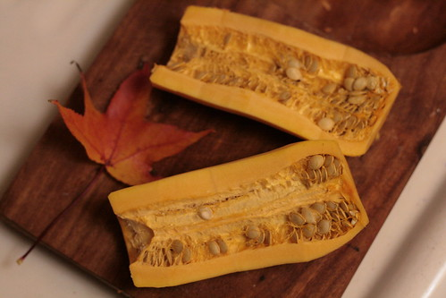 Insides of the Delicata Squash