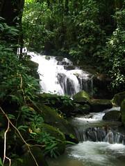 Yet more waterfall