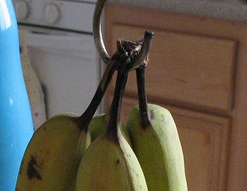 green bananas2