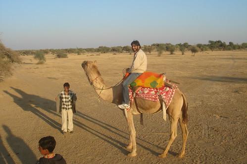 騎駱駝1-16