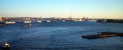 South Brooklyn and the Verrazano-Narrows Bridge from Gouverner Lane