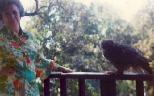 Grandma and her owl