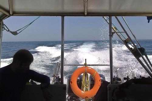 Returning from diving at Qaruh