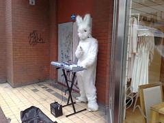 piano bunny