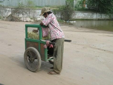 Sugar cane vendor
