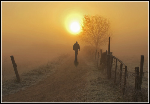 the divine light