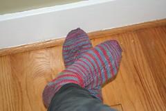 Sockapaloooza 4 Socks