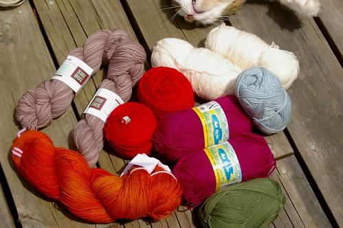 Babette colors with cat