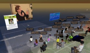 Le Grenelle de l'Environnement sur l'Ile Verte (Second Life)