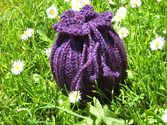 FruitSock_2008Jul4_Purple