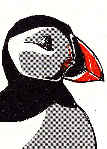 Detail of the puffin.