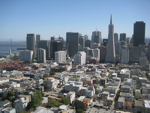San Fran From Colt Tower
