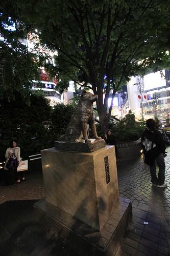 Hachiko Statue, Shibuya Japan