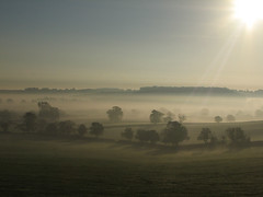 another misty morning in the English countryside