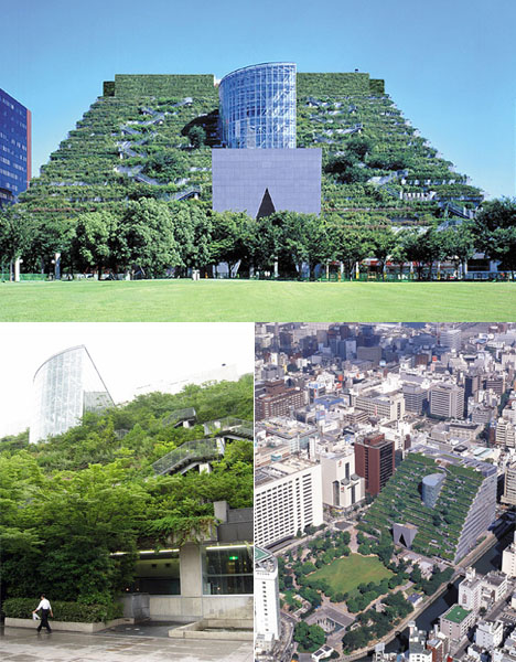 Japanese Contemporary Green Roof