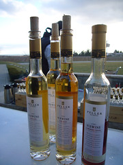 Niagara Ice Wine Festival - Peller 2