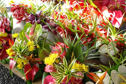 flowers at the Hilo Farmer's Market